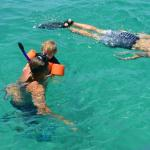 Snorkeling and making memories with the whole family